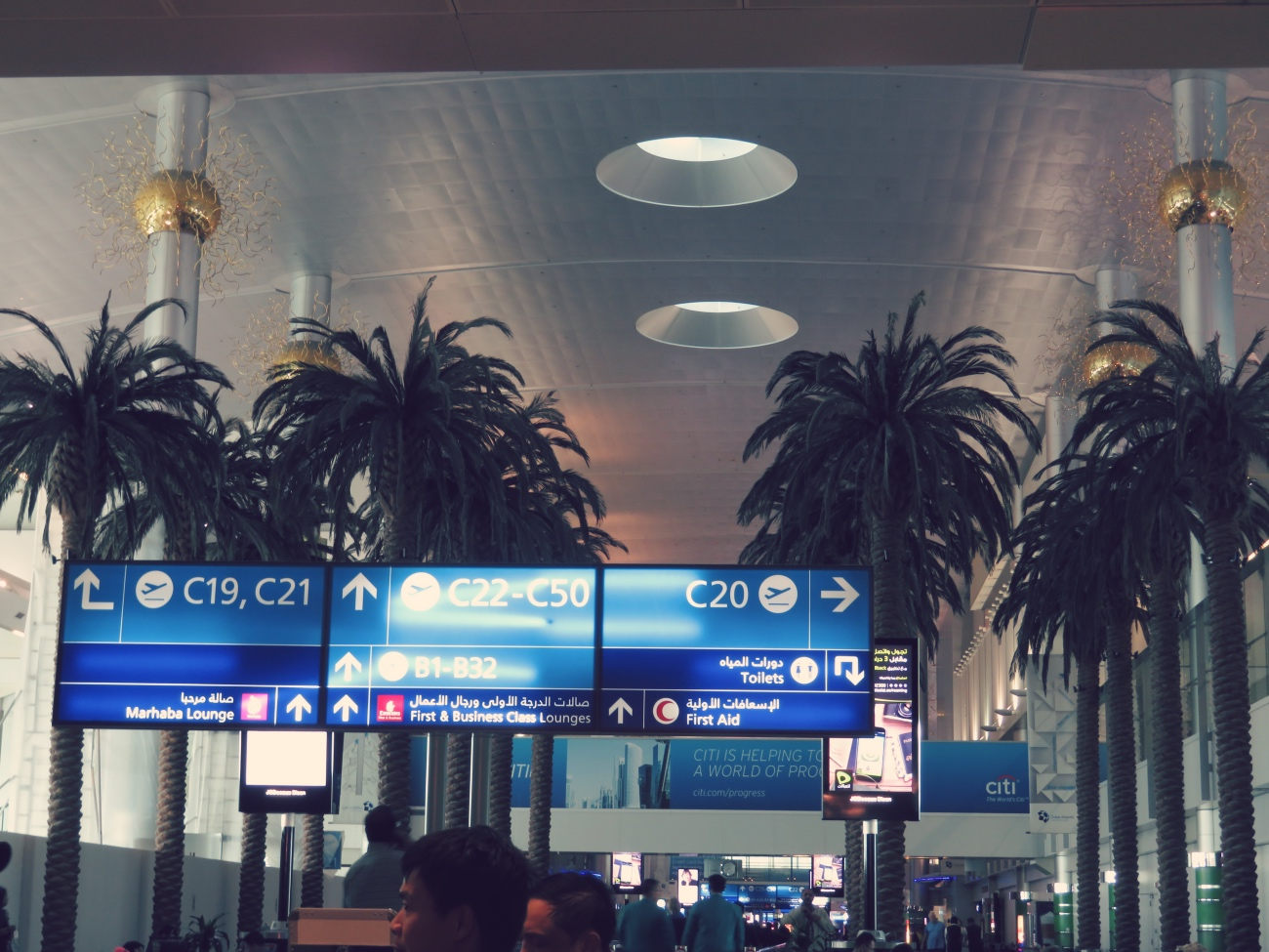 Palmen Dubai Flug